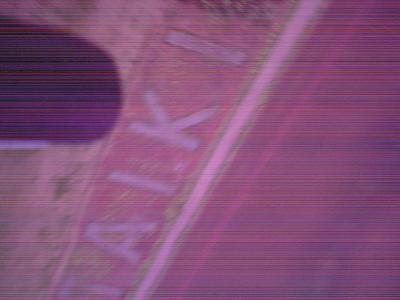 090623_CatCAM_taiki.jpg
