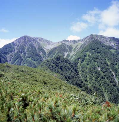 2005akaishi.jpg