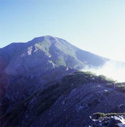 2005hijiri.jpg